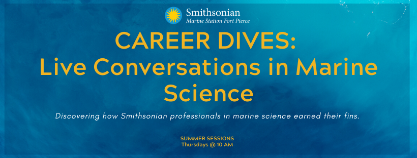Career Dives: Live Conversations in Marine Science with Ecologist Holly Sweat
