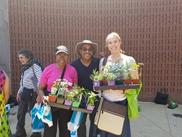 Urban Gardening Workshop:  Fall Harvest and Planting