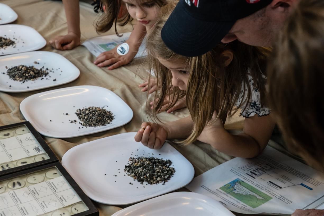 The World and Me Family Program: How Fossils Get to the Museum