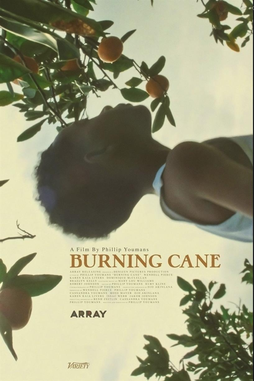 Cinema + Conversation: Burning Cane
