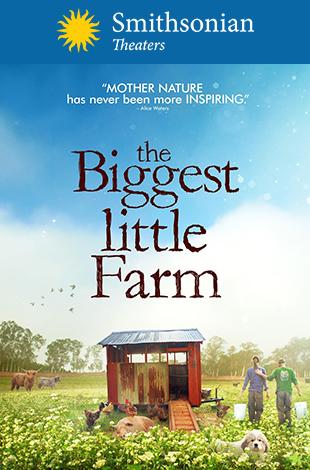 Oscars® Spotlight: Documentaries -- The Biggest Little Farm