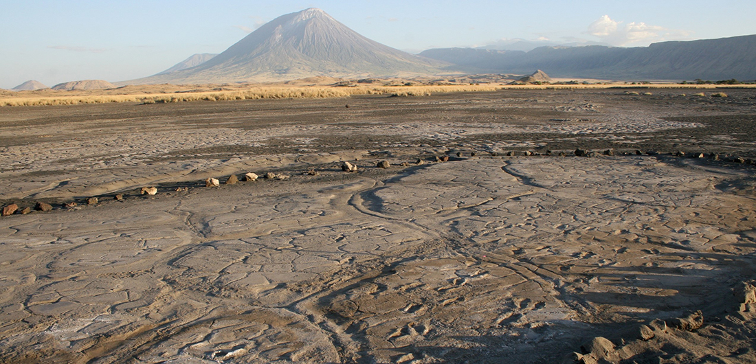 Fossilized Footprints Reveal a Snapshot of Early Human Life
