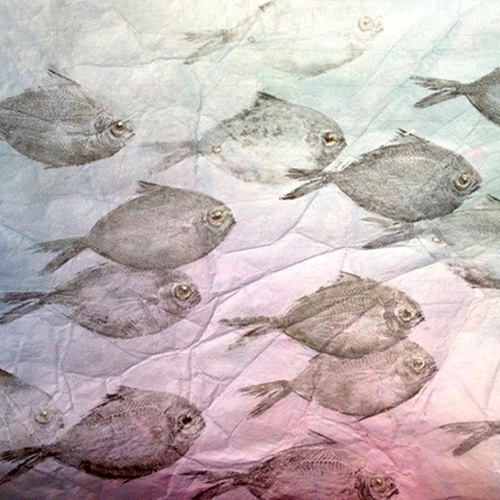 Gyotaku: The Japanese Art of Printing with Fish