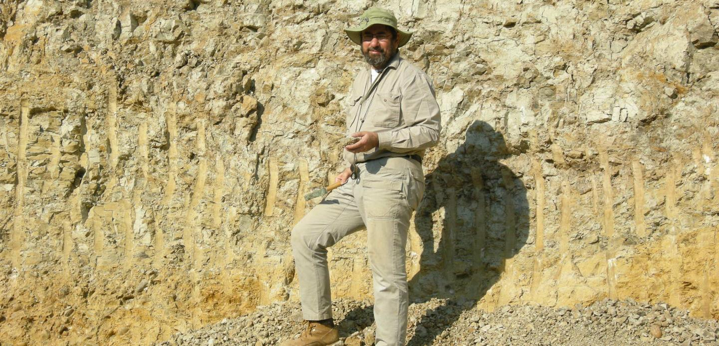 Expert Is In: Insect damage on fossil plants tells a story of the history of life